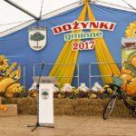 DOŻYNKI GMINNE 2017 w SOŚNICOWICACH (17)