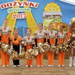 DOŻYNKI GMINNE 2017 w SOŚNICOWICACH (23)
