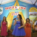 DOŻYNKI GMINNE 2017 w SOŚNICOWICACH (40)