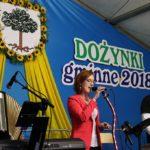 DOŻYNKI GMINNE 2018 w SOŚNICOWICACH (167)